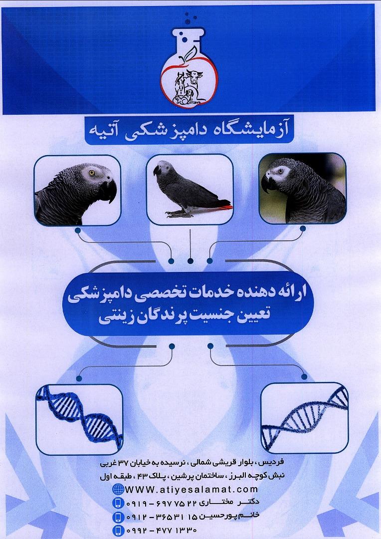 شرکت دانش بنیان تامین آتیه سلامت البرز3